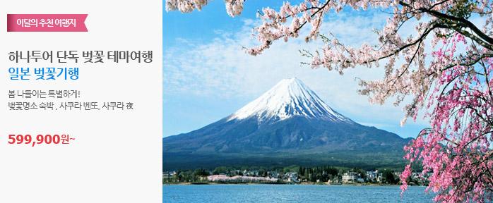 일본 벚꽃기행
